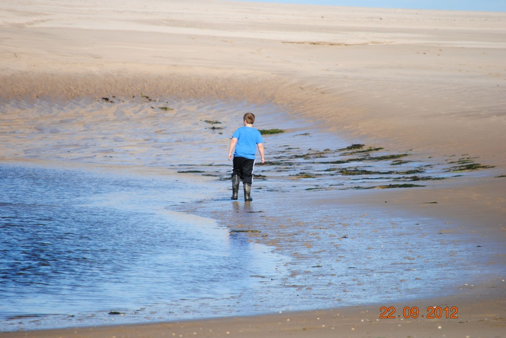 Budle Bay to Bamburgh September