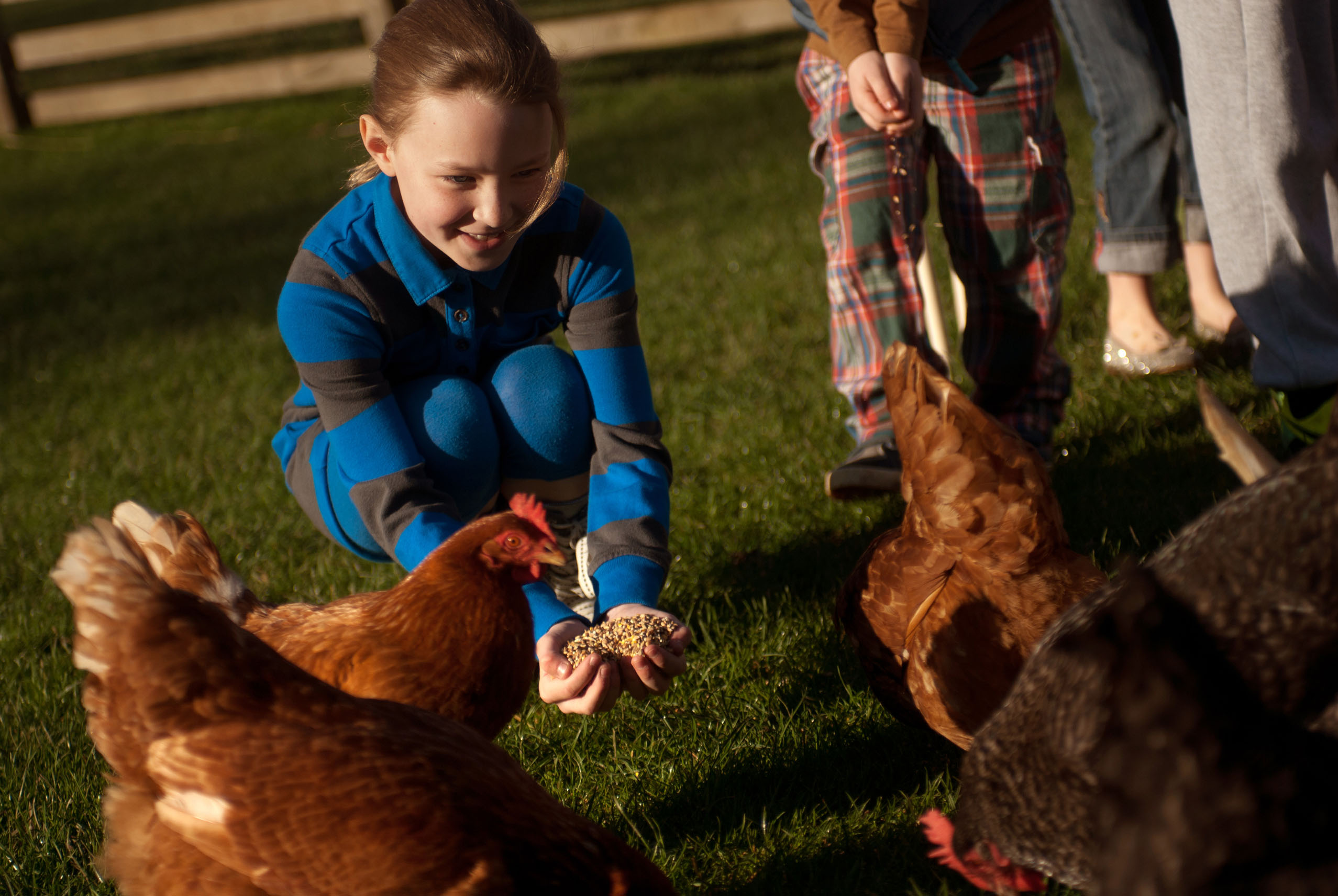 Experience Budle Bay Farm Stays UK